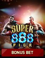 Boxing Pro